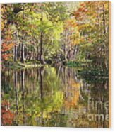 Florida Autumn Secret Wood Print