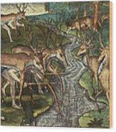 Florida: Hunters, C1591 Wood Print