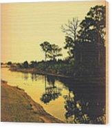 Florida Landscape II Wood Print