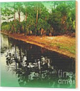 Florida Landscape Wood Print by Susanne Van Hulst