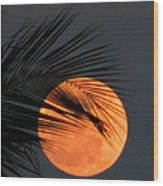 Florida Moonrise Wood Print