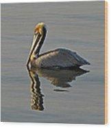 Florida Pelican Wood Print