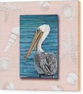 Florida Pelican With Seashell Border Wood Print by Peggy Dreher