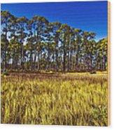 Florida Pine 3 Wood Print