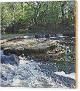 Florida Rapids Wood Print