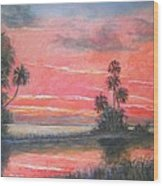 Florida River Scene Wood Print