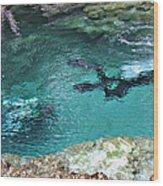 Florida Springs Cave Divers Wood Print
