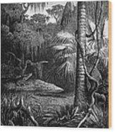 Florida: Swamp Wood Print