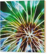 Flower - Dandelion Tears - Abstract Wood Print