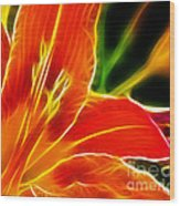 Flower - Lily 1 - Abstract Wood Print