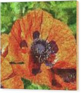 Flower - Poppy - Orange Poppies  Wood Print