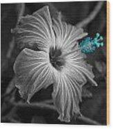 Flower 1 Wood Print