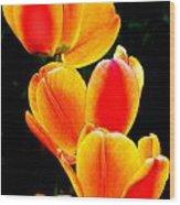 Flower 20 Wood Print