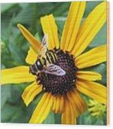 Flower-26 Wood Print