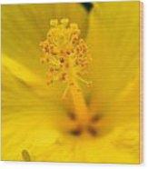 Flower 7 Wood Print