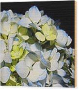 Flower 75 Wood Print