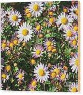 Flower Assault Wood Print