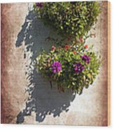 Flower Baskets Wood Print