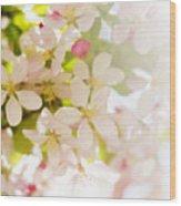 Flower Blossoms Wood Print