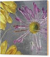 Flower Blossoms Under Ice Wood Print