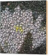 Flower Bottle Cap Mosaic Wood Print by Paul Van Scott