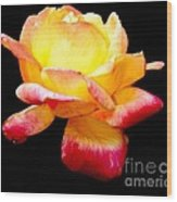 Flower Glow Wood Print
