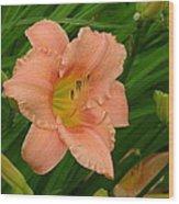 Flower In Pink Wood Print