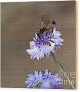 Flower Meal Wood Print