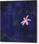 Flower Wood Print by Moaan