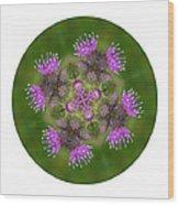 Flower Of Scotland Wood Print