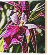Flower Painting 0002 Wood Print by Metro DC Photography