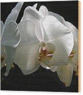 Flower Painting 0004 Wood Print
