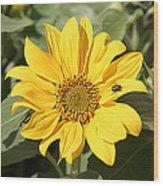 Flower Painting 0010 Wood Print