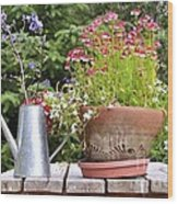 Flower Pot 6 Wood Print