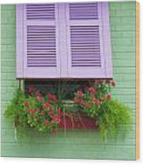 Flower Pot Window Wood Print