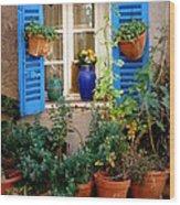 Flower Pots Galore Wood Print