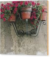 Flower Pots On Old Wall Wood Print