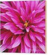 Flower Squared Wood Print