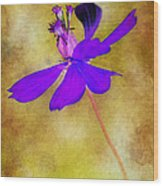 Flower Take Flight Wood Print by Judi Bagwell