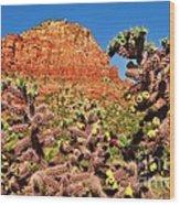 Flowering Desert Cactus Framing Red Rock Cliffs Wood Print