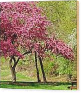Flowering Tree Wood Print