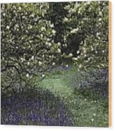 Flowering Trees Amid A Meadow Full Wood Print