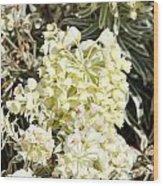 Flowers - 0052 Wood Print