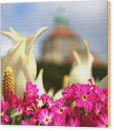 Flowers - Botanical Garden Munich Wood Print