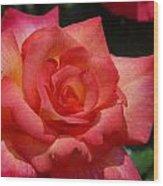 Flowers 294 Wood Print