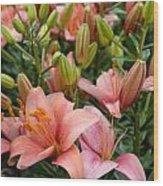 Flowers 385 Wood Print
