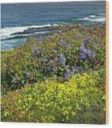 Flowers Along The Shore At La Jolla California No.0203 Wood Print