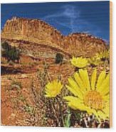 Flowers And Buttes Wood Print