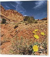 Flowers And Canyons Wood Print