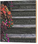Flowers And Steps Wood Print